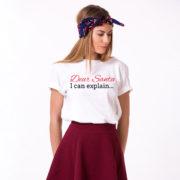 Dear Santa I can explain shirt, Santa shirt, Christmas shirt, Christmas t-shirt, UNISEX