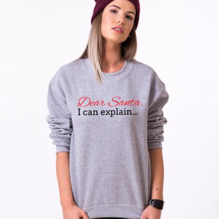 Dear Santa I can explain sweatshirt, Santa sweatshirt, Christmas sweatshirt, Christmas sweatshirt, UNISEX