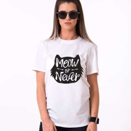 meow-or-never