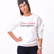 Dear Santa I can explain sweatshirt, Santa sweatshirt, Christmas sweatshirt, Christmas sweatshirt, UNISEX 3