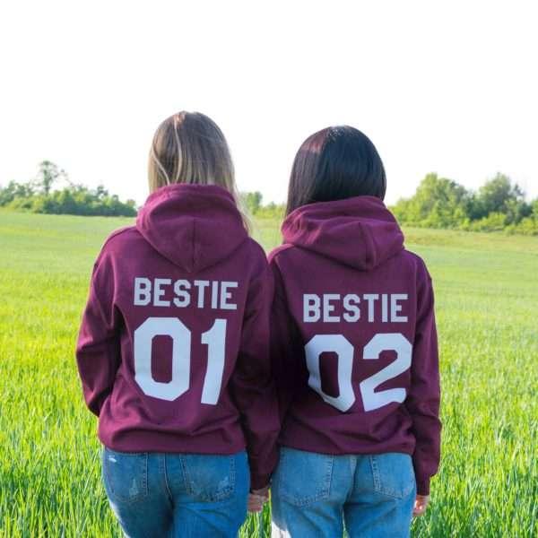 Bestie 01 Bestie 02 Matching Hoodies, Matching Best Friends Hoodies